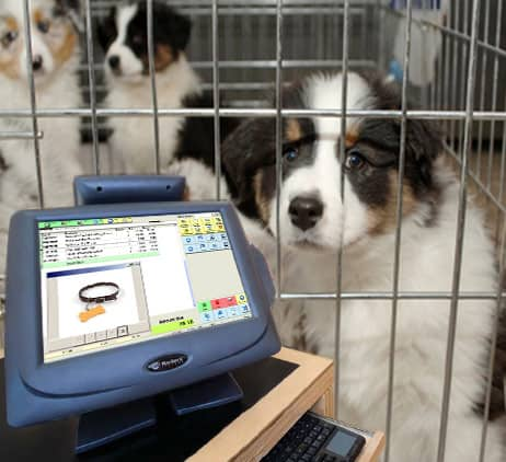 pet store pos system